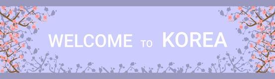 Benvenuto al manifesto orizzontale di viaggio della destinazione della Corea con bella Sakura Tree Flowers On Background illustrazione vettoriale