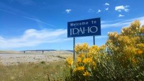 Benvenuto al segno dell'Idaho, largamente video d archivio
