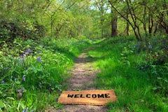 Benvenuto al terreno boscoso della sorgente orizzontale Immagine Stock