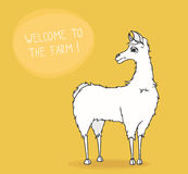 Benvenuto all'azienda agricola! Il lama sveglio vi invita - illustrazione di vettore Immagine Stock