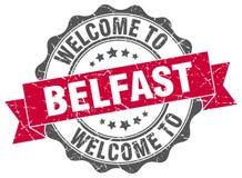 Benvenuto alla guarnizione di Belfast Immagine Stock
