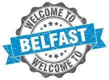 Benvenuto alla guarnizione di Belfast Fotografia Stock Libera da Diritti