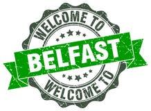 Benvenuto alla guarnizione di Belfast Fotografia Stock