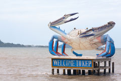 Benvenuto alla statua del granchio di Kep, piatto della città, nei wi della costa di mare della Cambogia fotografie stock