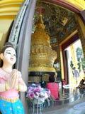 Benvenuto di Sawatdee per vedere la pagoda di stupa dell'oro immagini stock libere da diritti