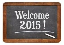 Benvenuto 2015 sulla lavagna Fotografie Stock Libere da Diritti