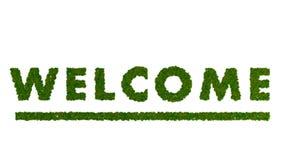 Benvenuto verde Fotografie Stock Libere da Diritti