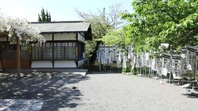Benzaiten Shrine hanami stock footage