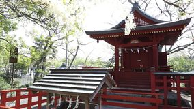 Benzaiten Shrine springtime stock video footage