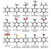 Benzene and its derivatives. Chemical formulas of benzene and its derivatives. Illustration Stock Photos