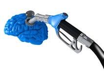Benzina nel cervello Fotografie Stock