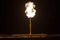 Benzynowa płomień pochodnia na rafinerii ropy naftowej roślinie Fotografia Royalty Free