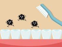 Beobachten Sie Hygiene und putzen Sie Ihre Zähne jeden Tag Stockfoto