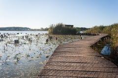 Beobachtungshütte für birdwatching auf einem Sumpf an der goldenen Stunde stockfotos