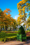 Beoutifyl autumn in summer garden, Saint Petersburg, Russia Stock Images