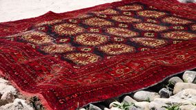 Bepaald rood tapijt stock video