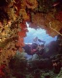 Beqa Soft Corals. Pearl's Point,Beqa Lagoon,Fiji Stock Photo
