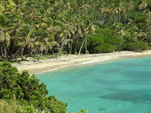 Bequia Beach Royalty Free Stock Image