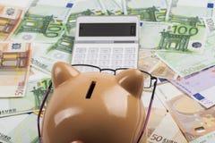 Beräknande euroskatter Arkivbilder