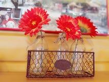 Berättelsen av tre blommor royaltyfri bild