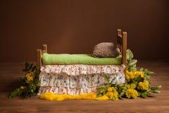 Berço para sessões fotográficas de um recém-nascido com flores e as folhas amarelas do verde imagem de stock royalty free
