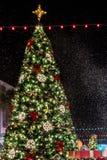 BERÖM FLORIDA, USA - DECEMBER, 2018: Jul med härliga ljus och snö royaltyfri fotografi