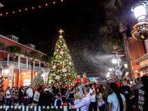 BERÖM FLORIDA, USA - DECEMBER, 2018: Jul med härliga ljus och snö royaltyfria bilder
