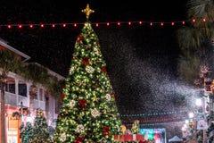 BERÖM FLORIDA, USA - DECEMBER, 2018: Jul med härliga ljus och snö arkivbilder