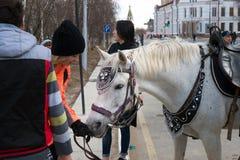 Beröm i staden på tillfället av den arbets- dagen Hästridning på den arbets- dagen för internationell ferie royaltyfria foton