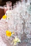 Beröm med champagneexponeringsglas Royaltyfria Foton