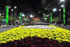Beröm Tet mån- för nytt år i Ho Chi Minh Royaltyfri Foto