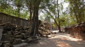Berömd en khmertempel, Kambodja stock video
