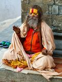 Berömd målad sadhu Royaltyfria Foton