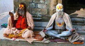 Berömd målad sadhu (helig man) om Pashupatinath Arkivfoton