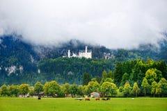 Berömd Neuschwanstein slott, sagaslott på en ojämn kulle ovanför byn av Hohenschwangau nära Fussen royaltyfria bilder