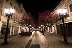 Berömd November 15 gångbana på natten Arkivbilder