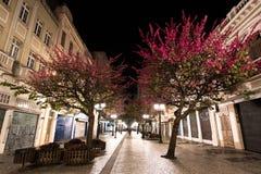 Berömd November 15 gångbana på natten Royaltyfri Bild