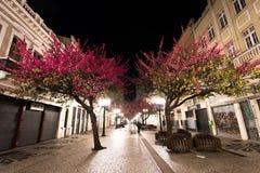 Berömd November 15 gångbana på natten Royaltyfri Fotografi