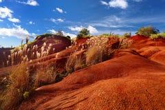 Berömd röd smuts av den Waimea kanjonen i Kauai Arkivbild
