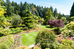 Berömd sjunken trädgård på Butchart trädgårdar Royaltyfri Bild