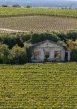 Berömda franska vingårdar på den Saint Emilion staden nära Bordeaux, royaltyfria bilder