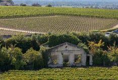 Berömda franska vingårdar på den Saint Emilion staden nära Bordeaux, Frankrike arkivbild