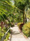 Berömda 99 kliver Charlotte Amalie arkivfoto
