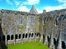 Berömda Quin Abbey i Irland Royaltyfria Foton