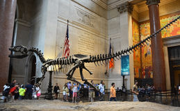 Berömt amerikanskt museum för nationell historia Arkivfoto
