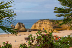 Berömt vagga bildande i havet på Praia da Rocha, Portimao, Portugal Arkivfoton