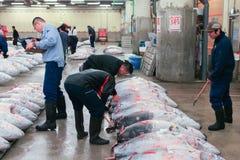 Berühmte Thunfischauktion am Tsukiji-Fischmarkt lizenzfreies stockfoto