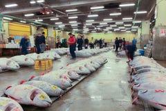 Berühmte Thunfischauktion am Tsukiji-Fischmarkt lizenzfreie stockfotos