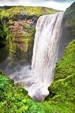 Berühmter Skogafoss-Wasserfall in Island Stockbilder