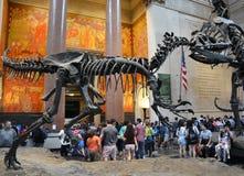 Berühmtes amerikanisches Museum für nationale Geschichte Lizenzfreies Stockfoto